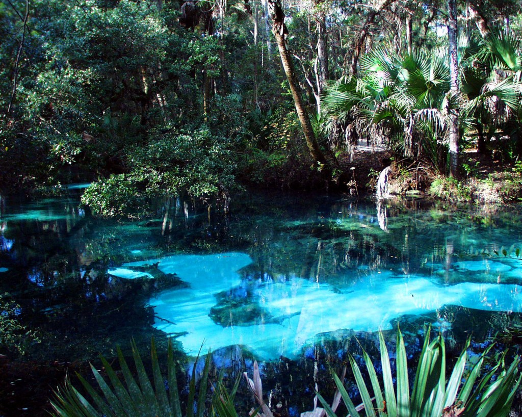 Freshwater Spring, Juniper Springs State Recreational Area, Marion County