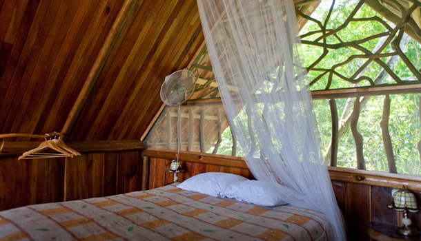 costa-rica-treehouse3