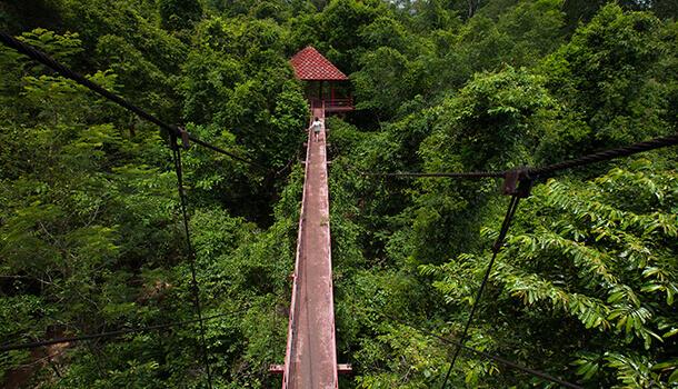 Ecotourism in Sabah