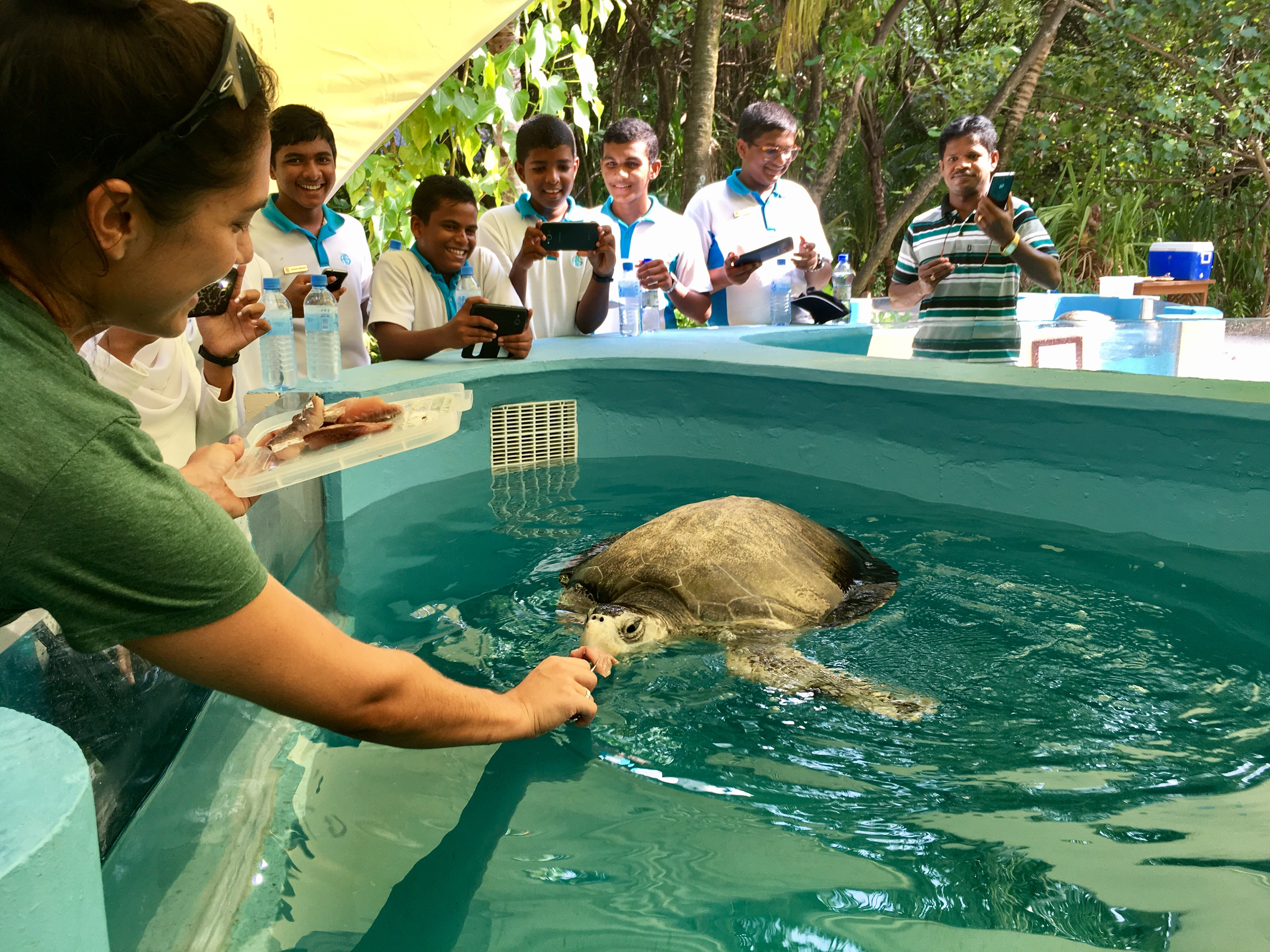 Feeding time at the rescue centre, educating the local school children about the threates to sea turtles.